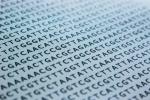 Secuencia ADN